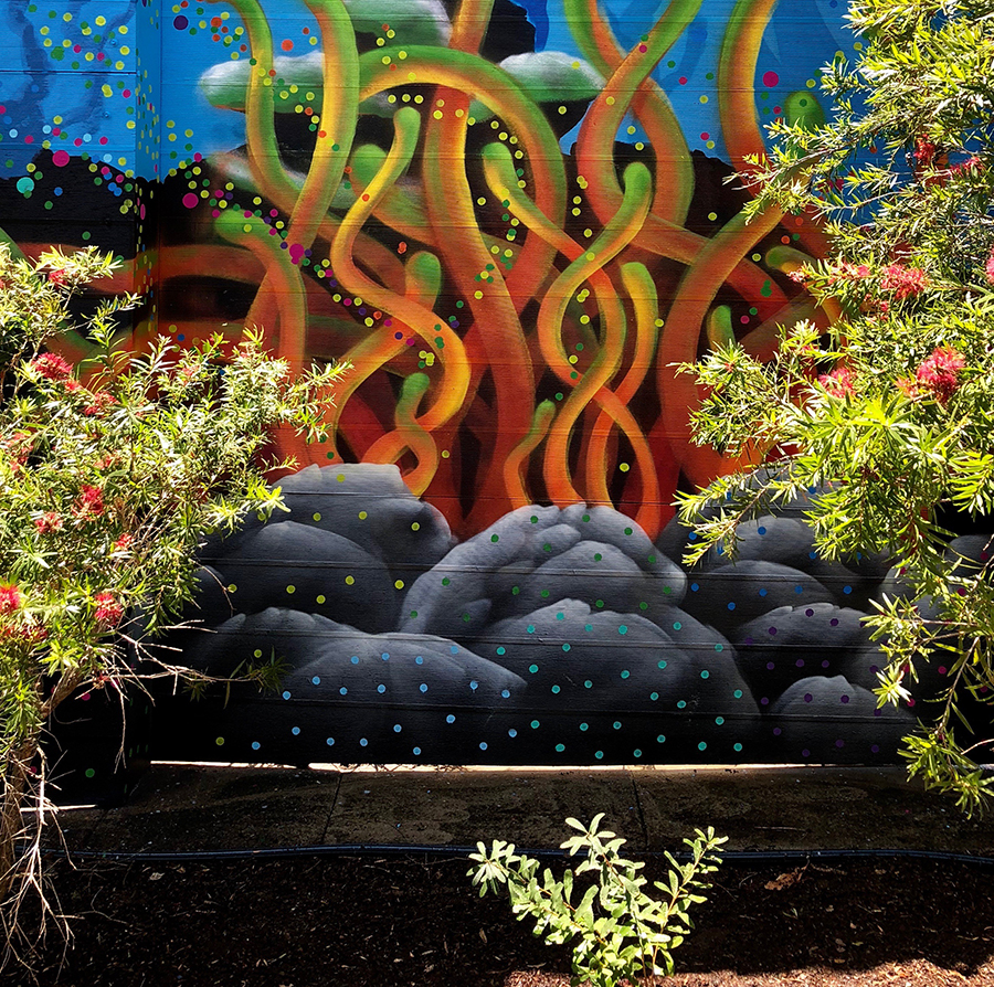 Caption: Detail from Benjamin Werner's art-science mural at Dutton Park State School