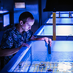 Researcher working at National Sea Simulator