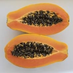 Papaya fruit research from CFNAS