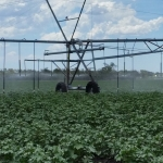 Smarter irrigation rig from NCEA